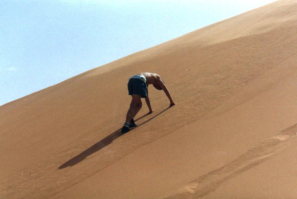 Dunes de sable, désert du Sahara (Algérie)